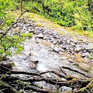 汤加里罗越山步道旅游景点攻略图