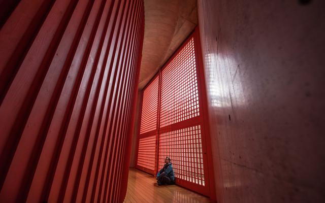 """一场因梦而生的建筑朝圣:日本关西探访""""清水混凝土大师""""安藤忠雄的名作"""