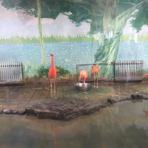 济南动物园旅游景点攻略图