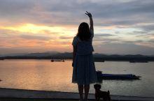 抹茶养成记之看夕阳 清明节以来,下了一个多月的雨,今天终于见太阳出来了。我们和抹茶也一个多月没来过江