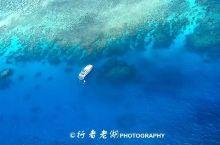 最后的纯净世界——大堡礁
