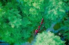 """我们包下了仙境般的""""江浙小瑞典"""",寻找免费体验者,划船露营、煮茶喝酒"""