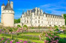 法国当季最适合游玩的经典卢瓦尔河谷城堡旅!