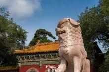 从清福陵看传统建筑