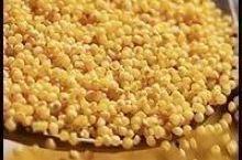 拼团丨黄土高原上的小米,养人啊