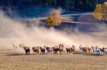 乌兰布统,梦中的草原模样