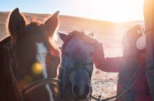冬季草原牧民迁徙