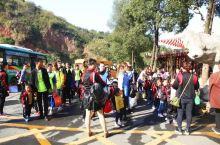 「彭山景区」秋游研学之旅,跟着小宝宝们一起去郊游啦!