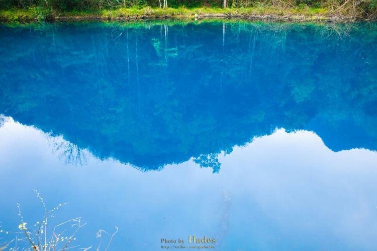 Wolong Pond3