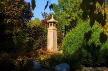 凉州植物园#向往的生活