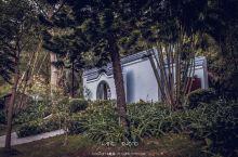 #向往的生活 | 城中山森林绿植丛中吸口氧