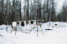 #向往的生活 冬日呼和浩特,白雪茫茫