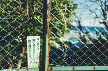 #向往的生活#北海道的旅行,是我最向往的生活!