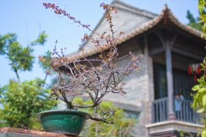 Dongguan,Recommendations