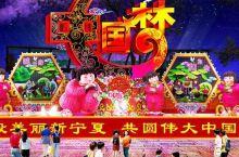 鸣翠湖首届冰雪彩灯文化旅游节,超全游玩指南点这里!
