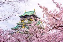 『浪漫樱花季』细数大阪的赏樱美屋