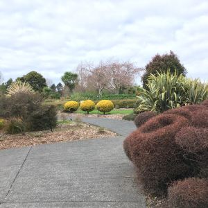 奥克兰植物园旅游景点攻略图