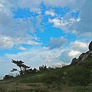 浮山森林公园旅游景点攻略图
