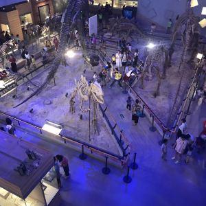 广东省博物馆旅游景点攻略图