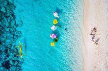 明星婚礼最爱选的海岛胜地,邮轮都能带你去!| 七夕大型虐狗现场