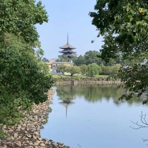 兴福寺旅游景点攻略图