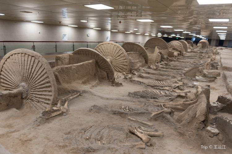 中国古車博物館2