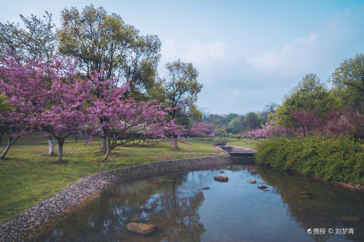 Longbeishan Forest Park4