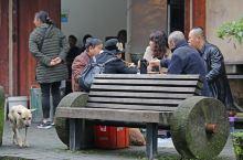 """丰盛古镇的仁寿茶馆,居然是哥老会""""仁""""字号堂口"""