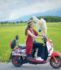 [大理游记图片] 云南旅游攻略·漫步彩云之南——丽江、香格里拉、大理七日玩转