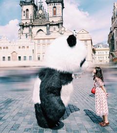 [布拉格游记图片] 缘分在布拉格|回忆留给布达佩斯吧