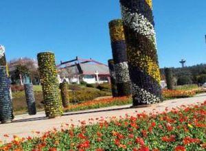 世界园艺博览园旅游景点攻略图