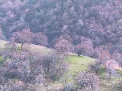 Xinghua Ditch