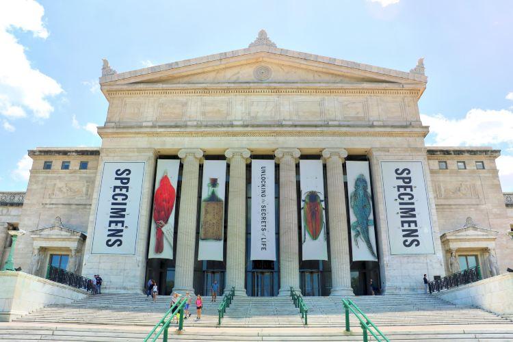 菲爾德博物館