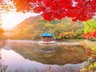 Naejangsan National Park