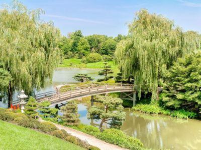 芝加哥植物園