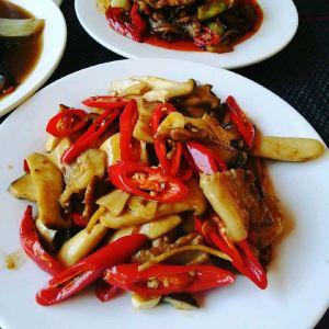 Koh Phangan,Recommendations