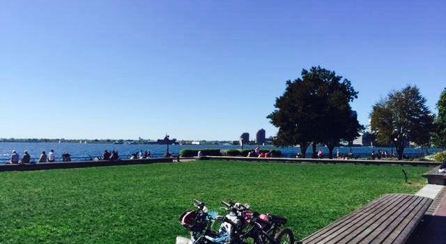 Gigino Wagner Park