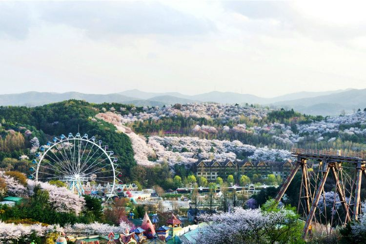 Everland Resort2