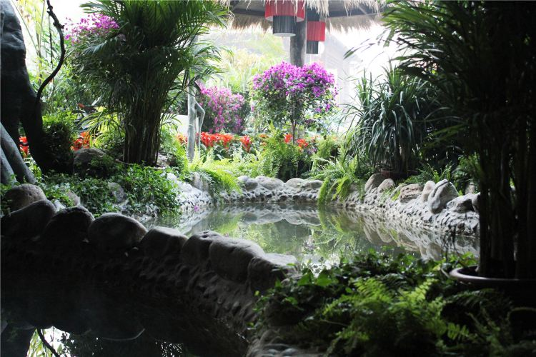 Aerkadiya Hot Springs Hotel2