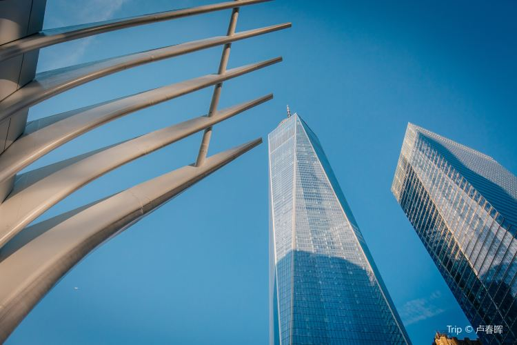 One World Trade Center1