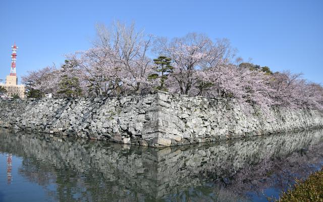 徳島の小さな町~徳島公園~