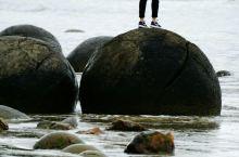 海边探孖宝——龙珠石与蓝背企鹅