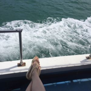 汀娜湾旅游景点攻略图