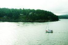赶往维多利亚的温哥华岛
