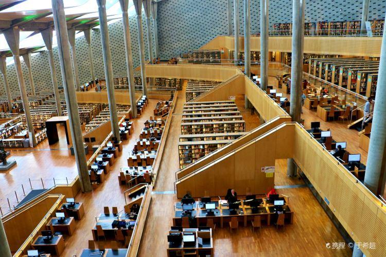 알렉산드리아 도서관1