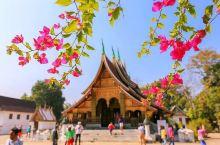 #元旦去哪玩#老挝香通寺,爱过琅勃拉邦