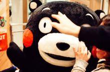 吃遍日本—熊本·熊本熊部长办公室