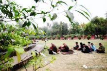 佛陀两千五百多年前,人类伟大的觉者释迦牟尼佛诞生在蓝毗尼花园的娑罗双树下在此之后的八十余年中佛陀的双
