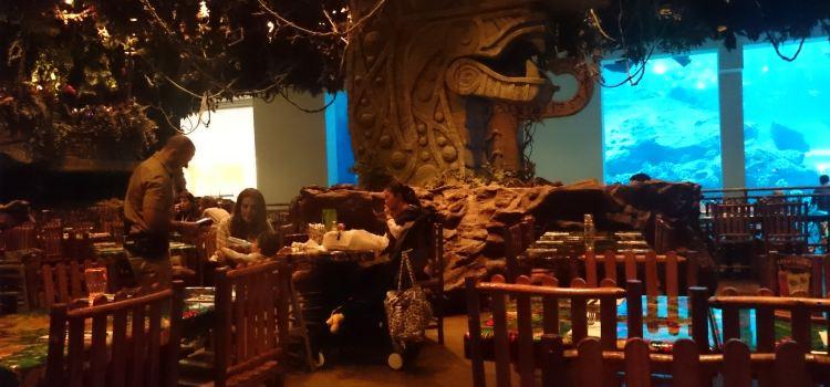 Rainforest Cafe2