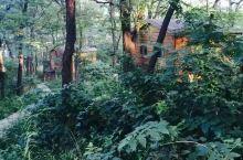 森林里的小木屋